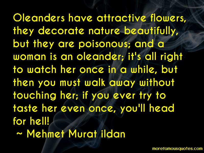Oleanders Quotes Pictures 3