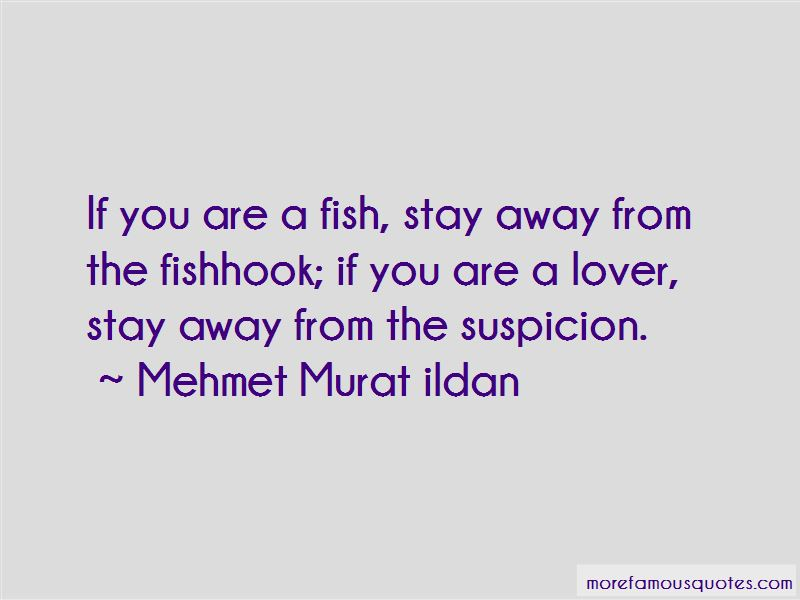 Fish Lover Quotes Pictures 4