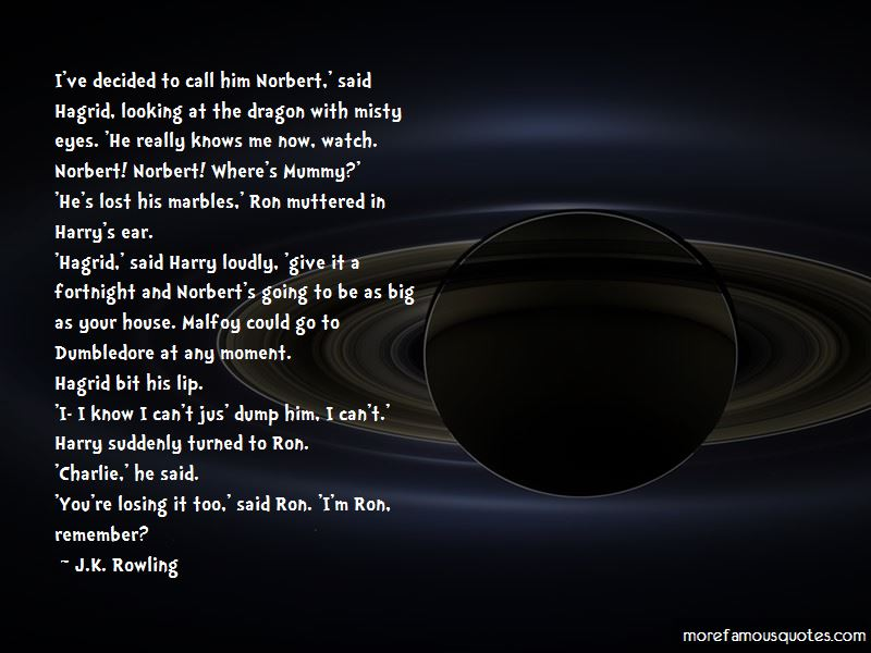 Lost Your Marbles Quotes Pictures 4