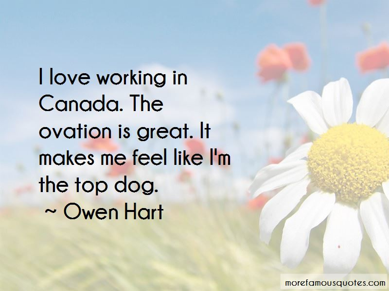 Top Dog Quotes Pictures 2