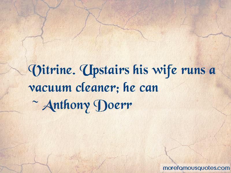 Vitrine Quotes