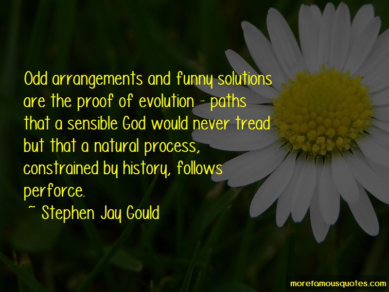 Funny Evolution Quotes