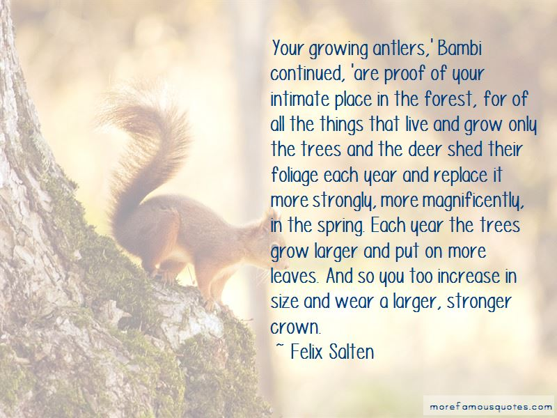 Grow More Trees Quotes