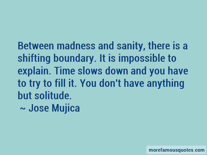 Quotes About Madness And Sanity
