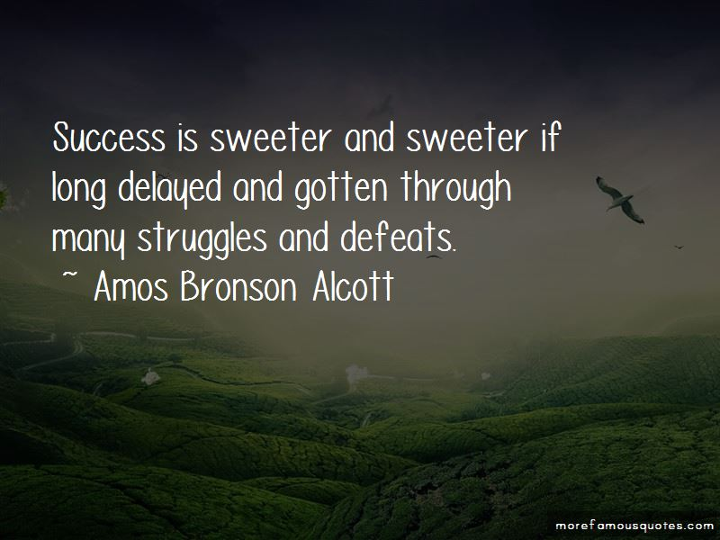 Struggles To Success Quotes Pictures 2