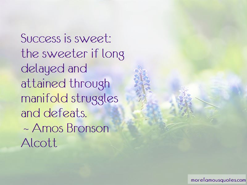 Quotes About Struggles To Success