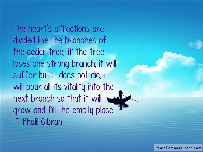 Cedar Tree Quotes