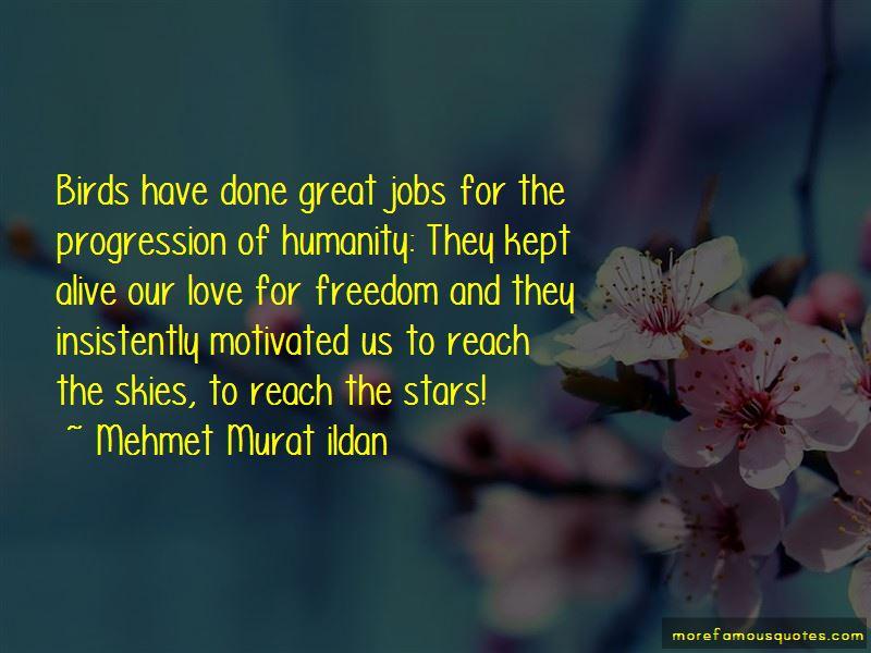 Love Progression Quotes
