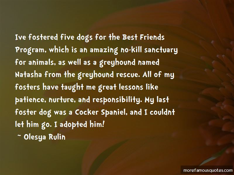 Quotes About Foster Dogs