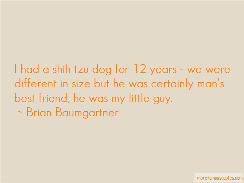 Quotes About Shih Tzu