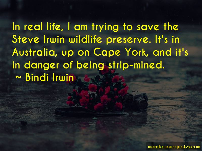 Quotes About Steve Irwin
