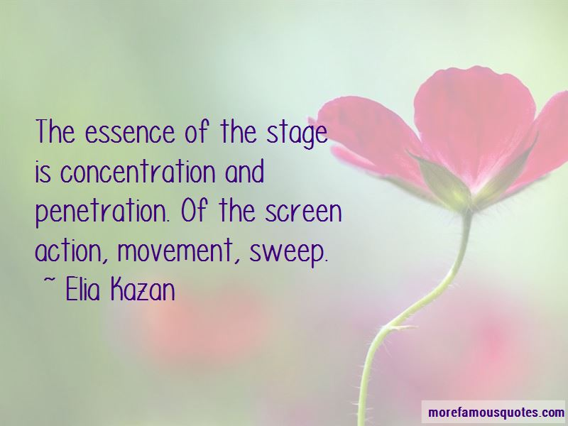 Quotes About Concentration