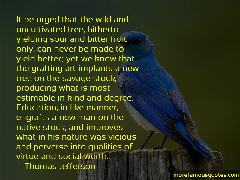 Quotes About Nature In Into The Wild