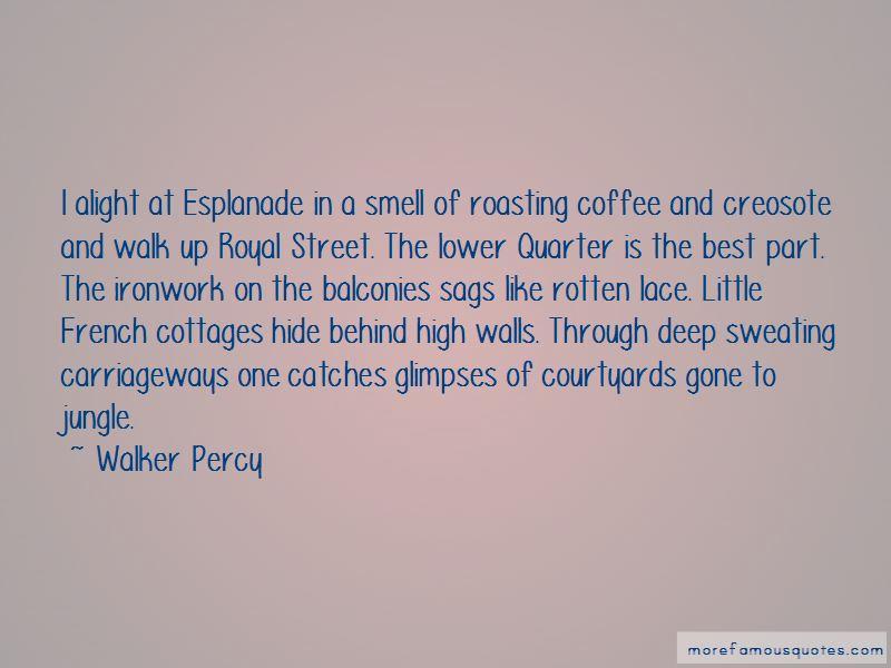 Best Roasting Quotes