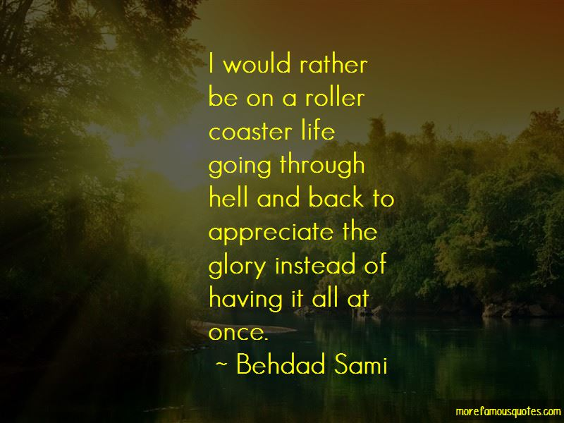 Quotes About A Roller Coaster Life
