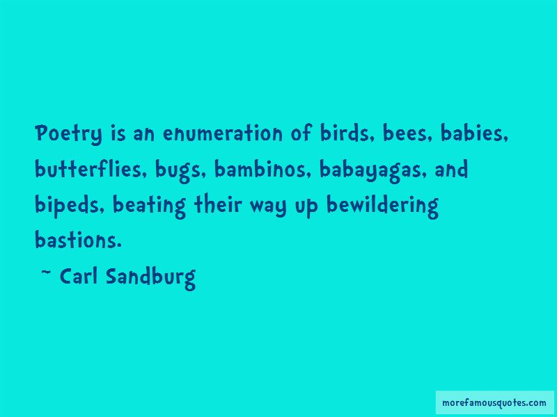 Quotes About Butterflies And Babies