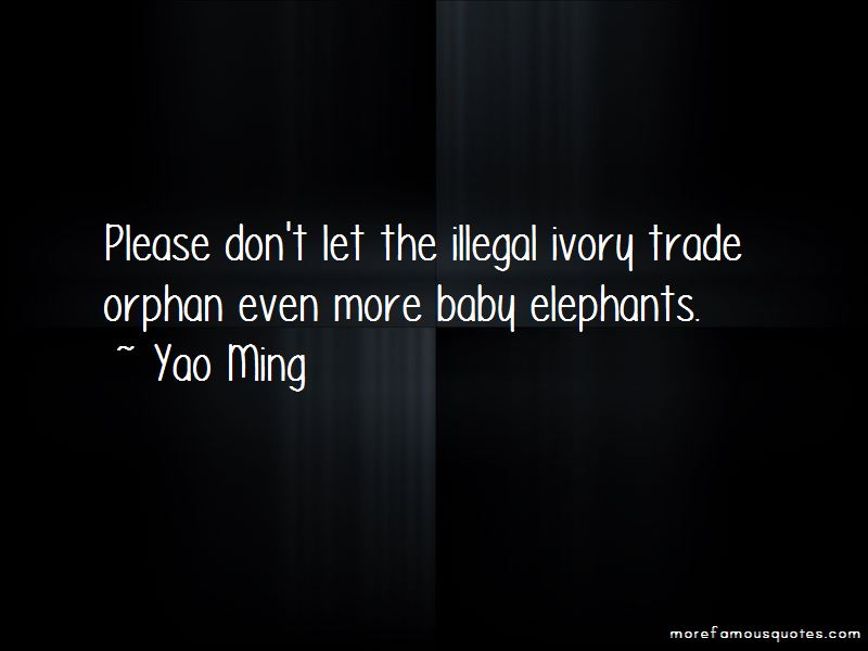 Ivory Trade Quotes Pictures 2
