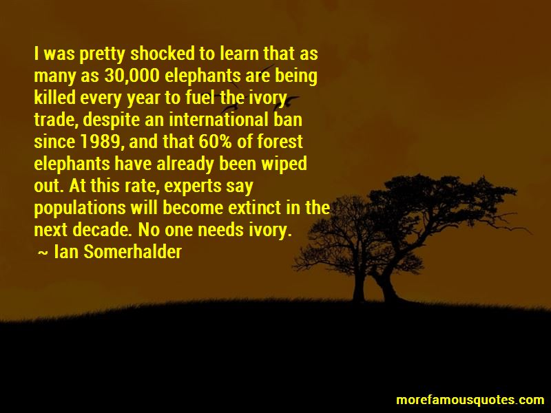 Quotes About Ivory Trade