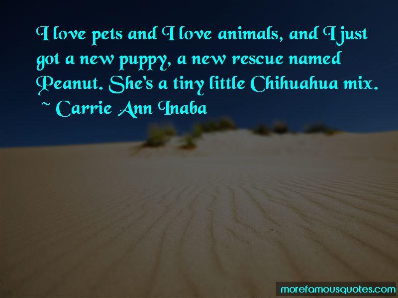 Rescue Pets Quotes Pictures 2