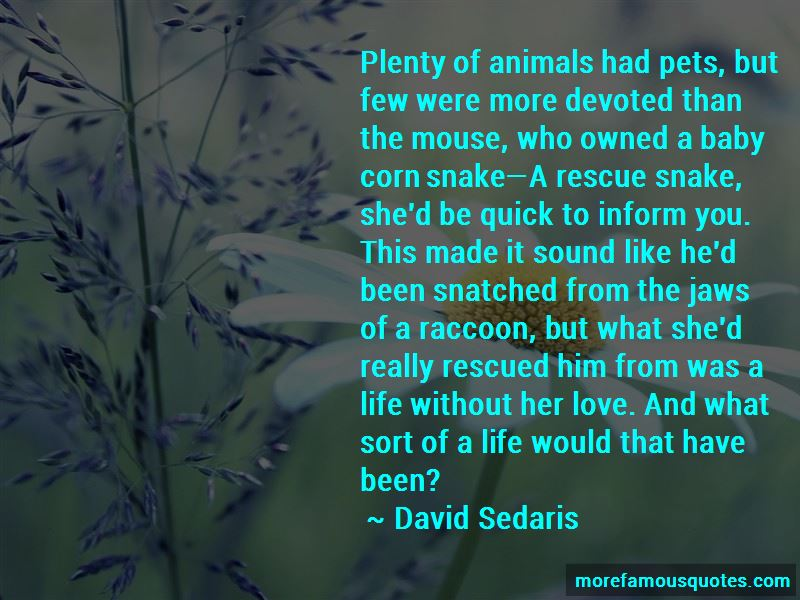 Quotes About Rescue Pets