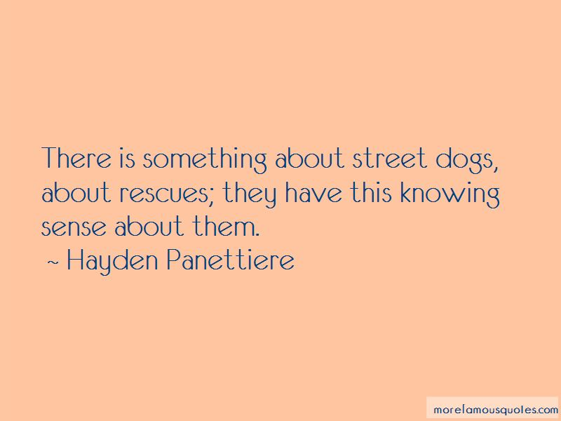 Quotes About Street Dogs