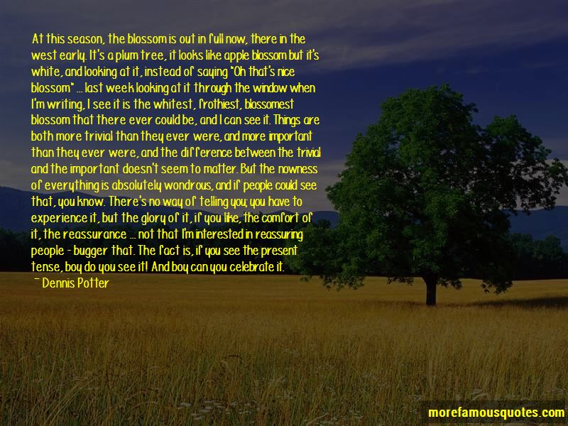 Quotes About Apple Blossom