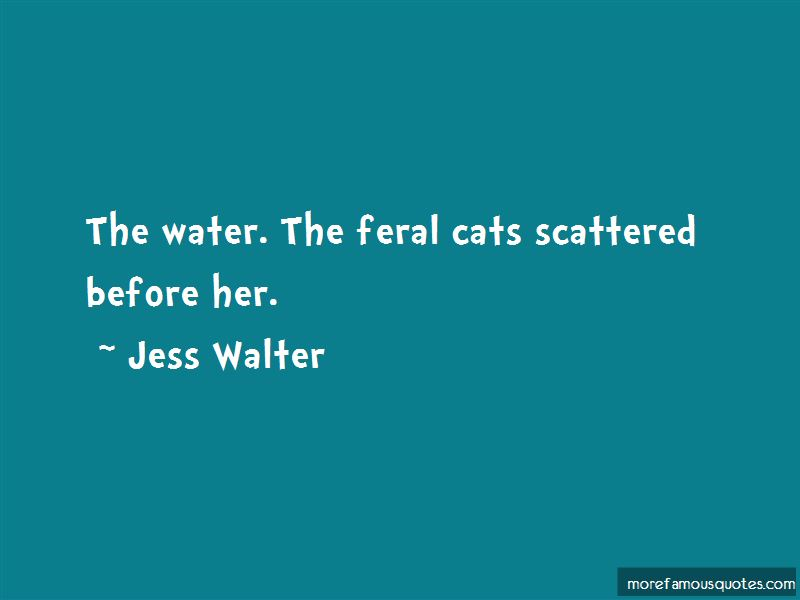 Feral Cats Quotes Pictures 4