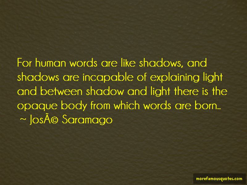 Shadow And Light Quotes Pictures 3