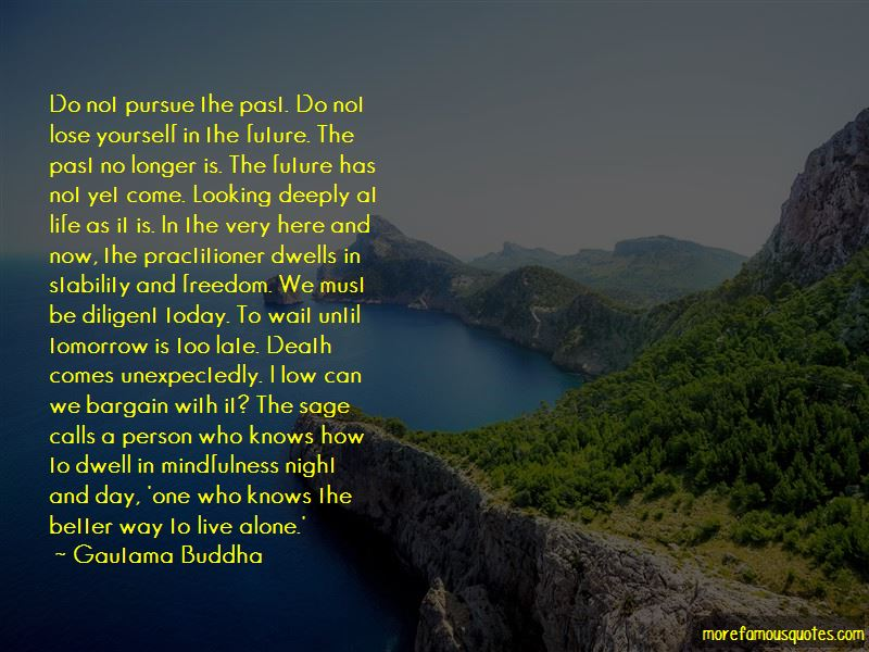 Quotes About Stability And Freedom