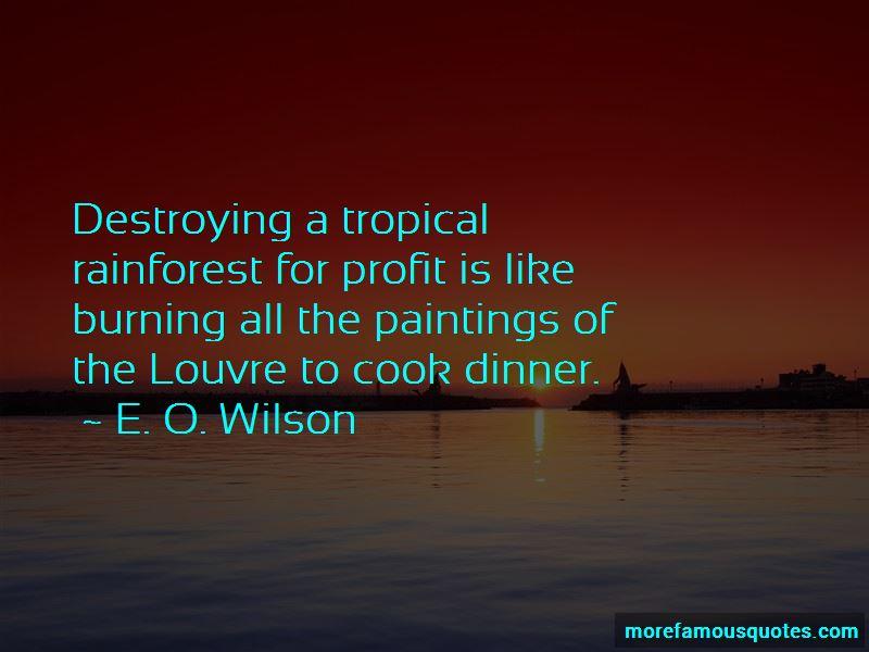 Tropical Rainforest Quotes Pictures 3