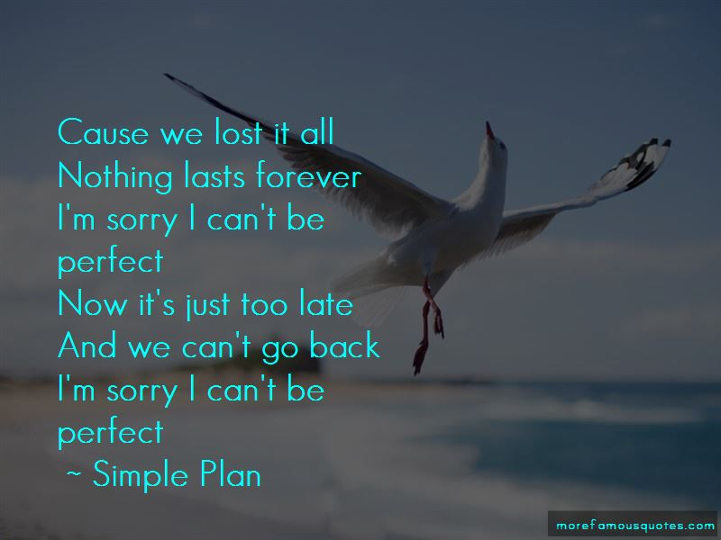 Sorry I Can't Be Perfect Quotes