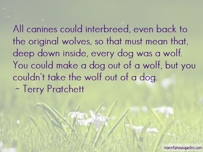 Wolf Dog Quotes Pictures 2