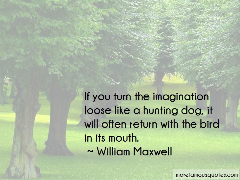 Bird Dog Hunting Quotes