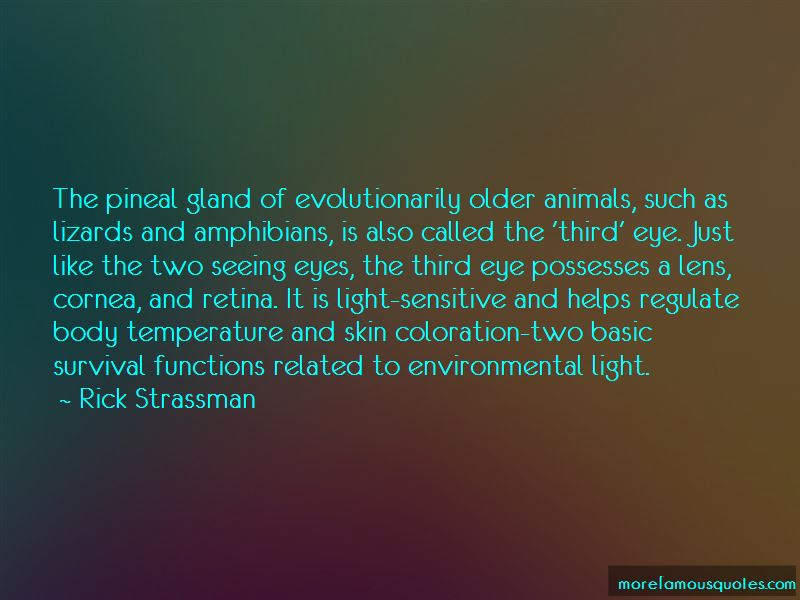 Pineal Gland Third Eye Quotes
