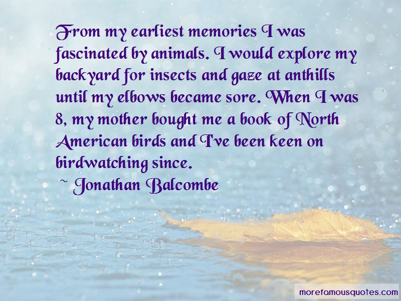 Quotes About Birdwatching