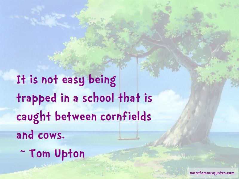 Quotes About Cornfields