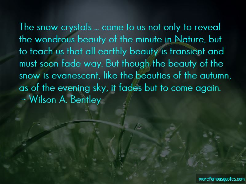 Quotes About Earthly Beauty