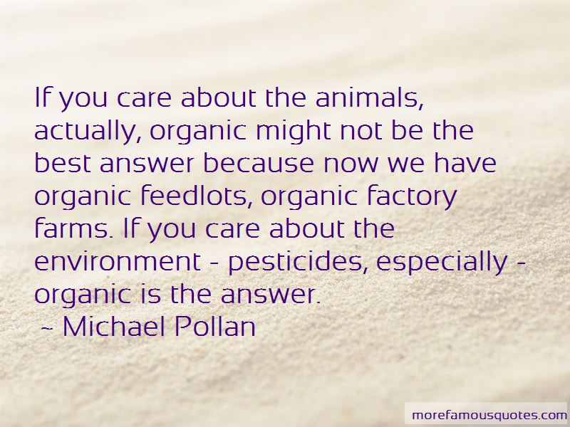 Quotes About Feedlots
