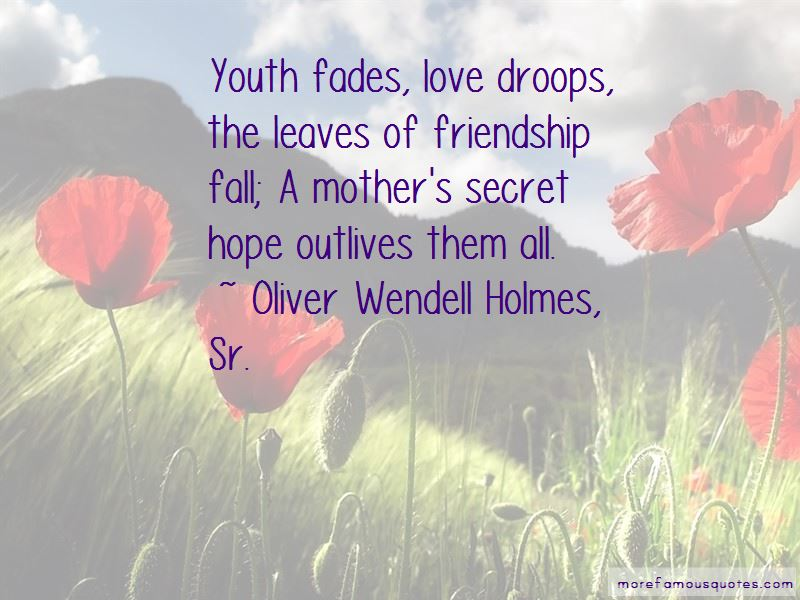 Friendship That Fades Quotes Pictures 4
