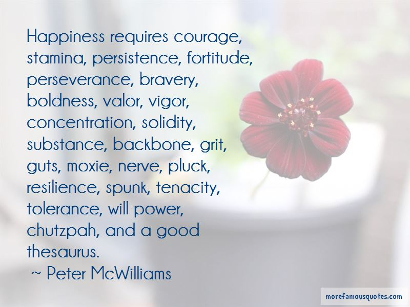 Persistence And Perseverance Quotes Pictures 3