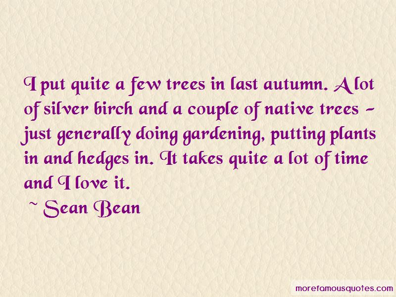 Silver Birch Quotes