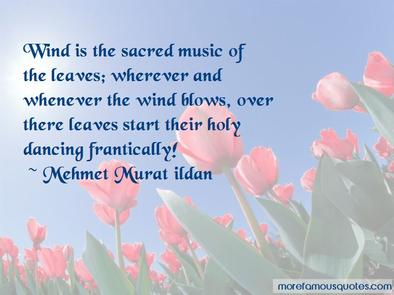 Wherever The Wind Blows Quotes Pictures 3