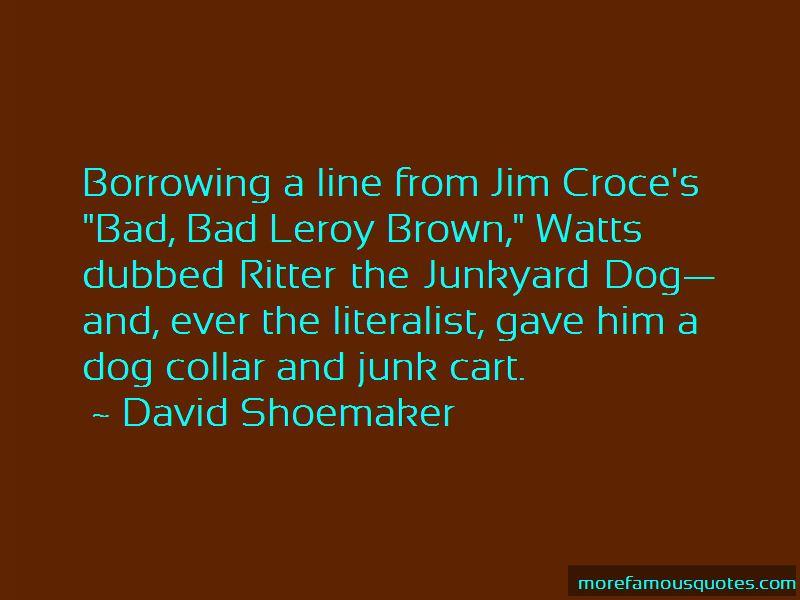 Dog Collar Quotes