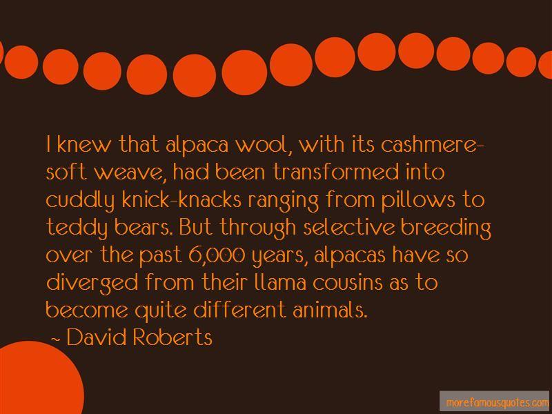 Alpacas Quotes Pictures 3