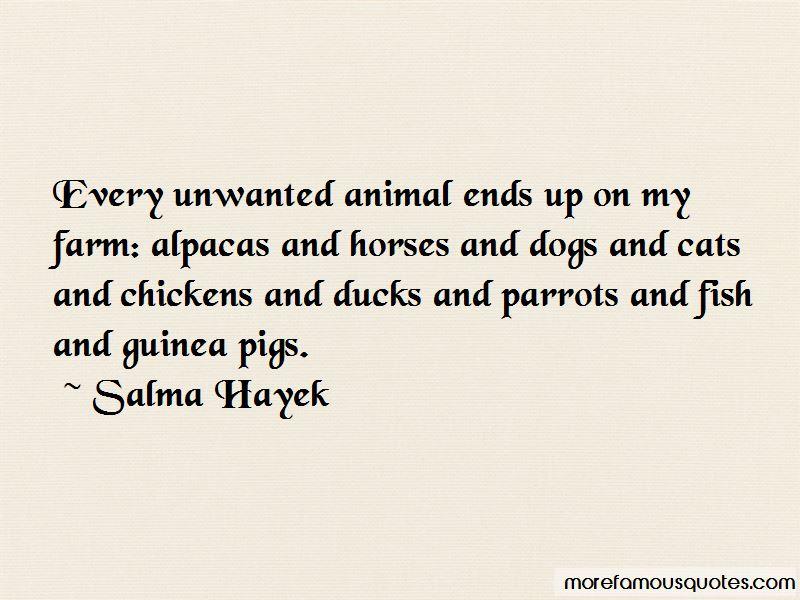 Quotes About Alpacas