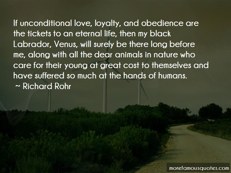 Quotes About Animals Unconditional Love Top 4 Animals Unconditional
