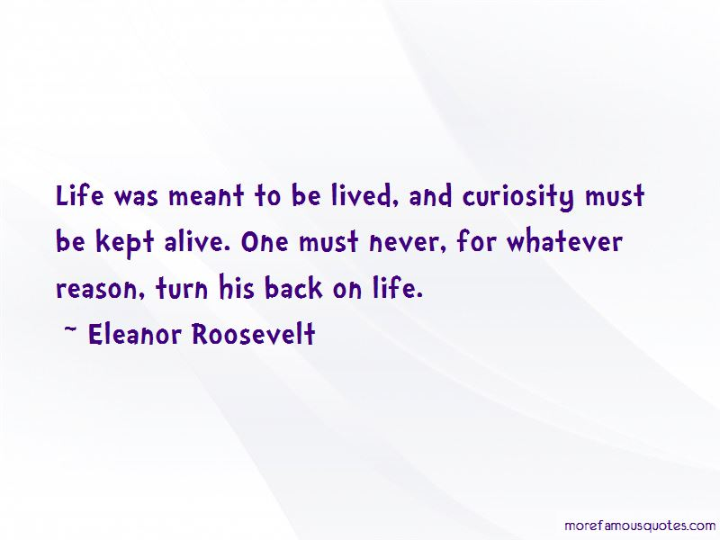 Curiosity And Life Quotes Pictures 2