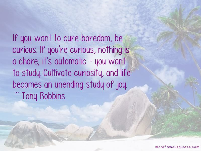 Quotes About Curiosity And Life