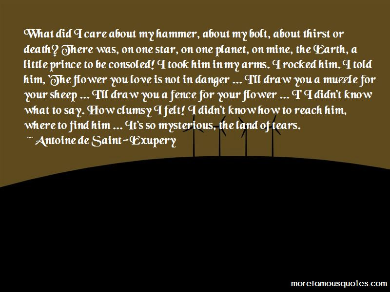 Death From The Little Prince Quotes Pictures 4
