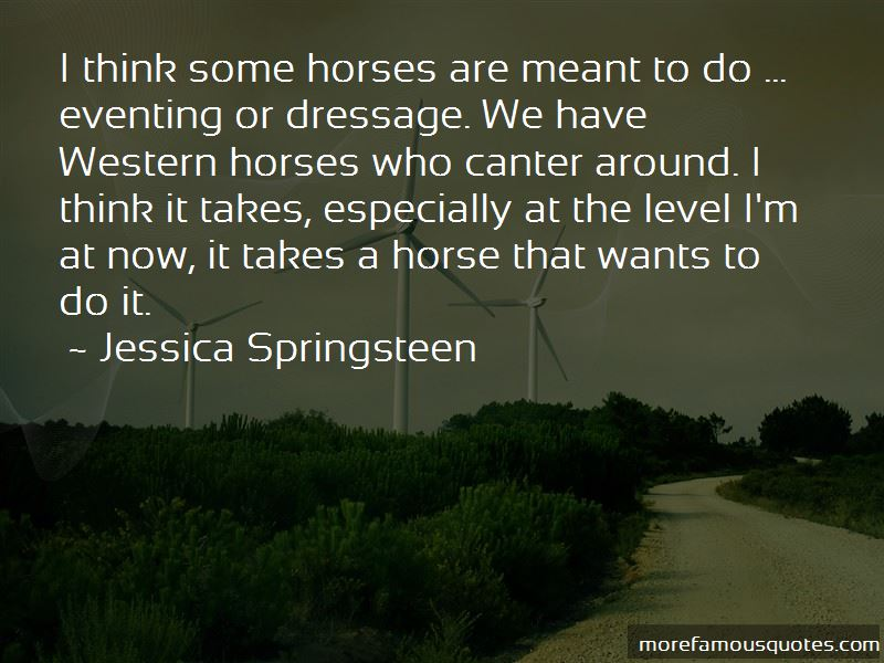 Quotes About Eventing Horses